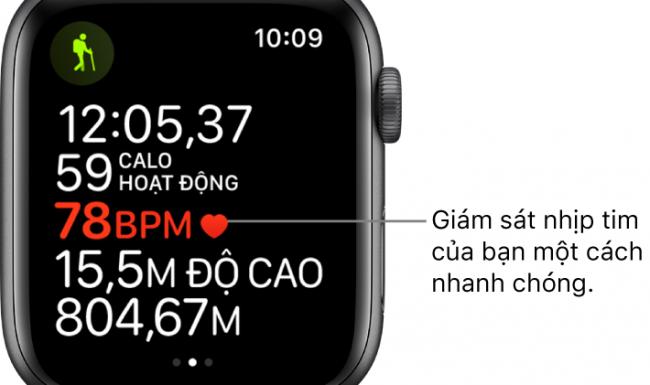 Hướng dẫn cách xem lịch sử ghi chép nhịp tim trên Apple Watch