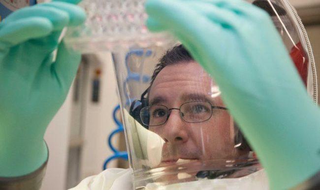 Bản sao virus corona mới do Úc sản xuất được đưa đến phòng thí nghiệm bảo mật cao