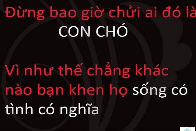 999-STT-chui-xeo-ban-be-hay-cham-biem-nguoi-gia-doi