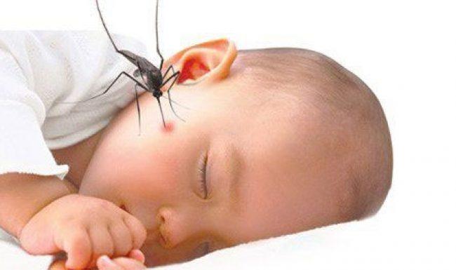 Cách trị muỗi đốt cho trẻ em hiệu quả mà không cần bôi thuốc