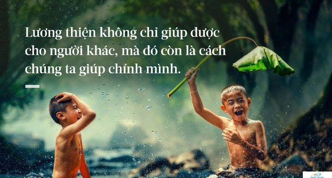di-lay-day-cot-cai-cay-bi-gio-quat-nguoi-dan-ong-khong-ngo-duoc-huong-loi-ca-doi